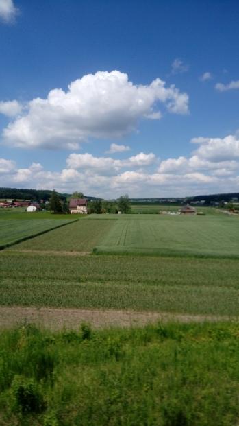 הנוף מחלון הרכבת