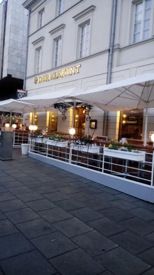 מסעדת דר אלפנט