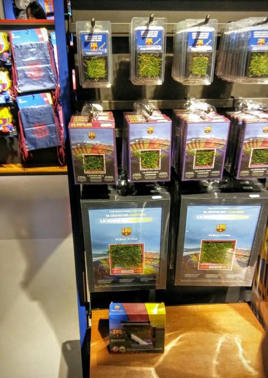 בחנות מוכרים דשא מהמגרש